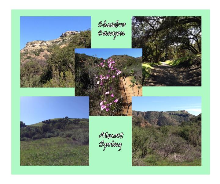 Chesebro_Almost Spring
