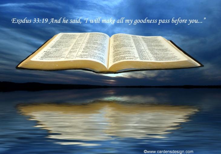 Ex 33 19 Bible