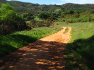 Palo Comado Canyon