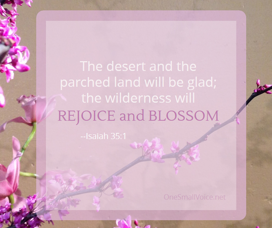 Isaiah 35_1