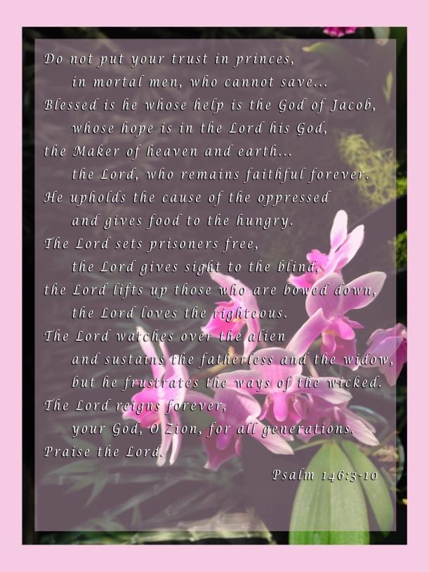 Psalm 146_3098 copy