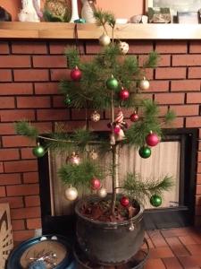 3-christmas-tree