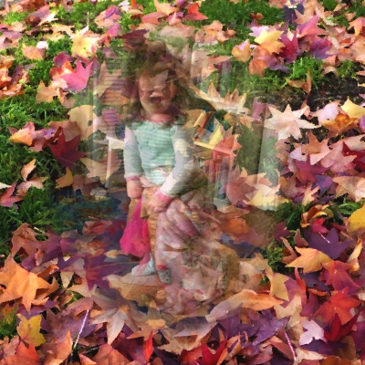 leaves-p1030658-sprite