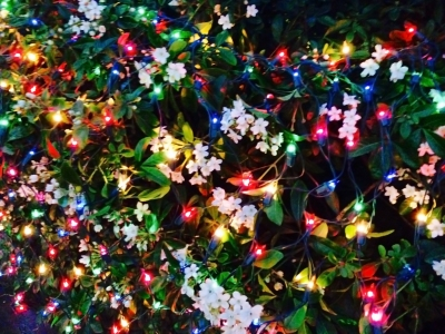 lights_6759